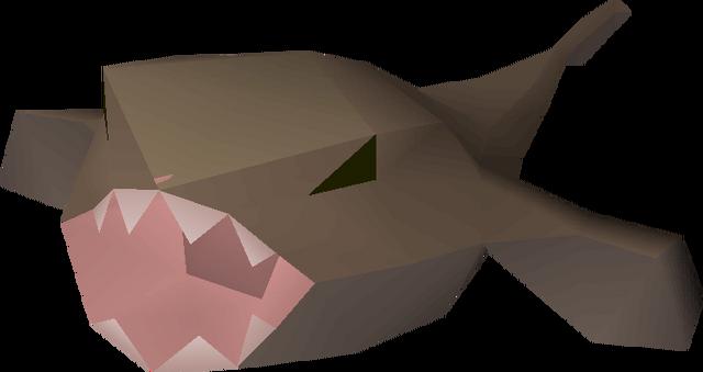 File:Monkfish detail.png