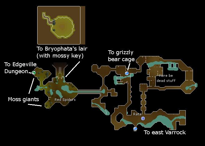 Varrock Sewer | Old School RuneScape Wiki | FANDOM powered by Wikia