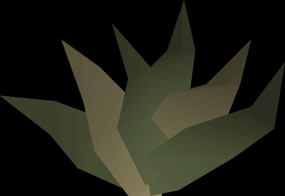 Goutweed detail