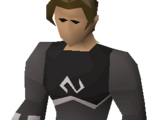 Void Knight equipment