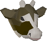 Dairy cow chathead