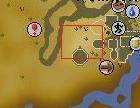 Ali The Operator Location