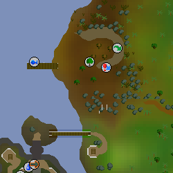 Corsair Cove Resource Area | Old School RuneScape Wiki