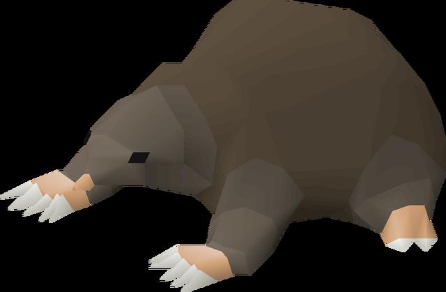 File:Baby mole pet.png