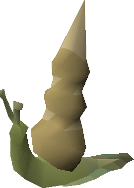 Myre blamish snail (pointed)