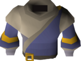 Ancestral robe top