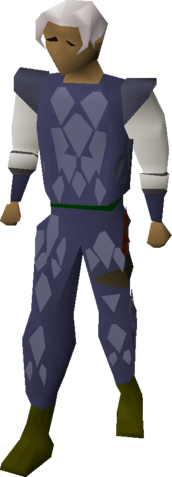 File:Blue d'hide armour equipped.png