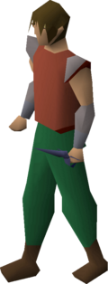 Mithril defender equipped