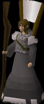 Squire (Novice)