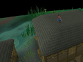 Canifis Agility Course 5.png