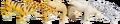 Big Cats & WWF (1).png