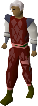 Red d'hide (t) set equipped