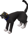 Cat (Wintertodt Camp).png
