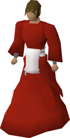 File:Elder chaos druid robes equipped v1.png