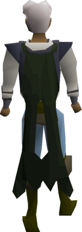 File:Lunar cape equipped.png