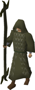 Ahrim's robes equipped