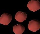 Buchu seed detail