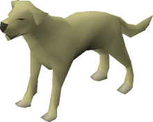 Dog (Myths' Guild)