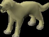 Dog (Myths' Guild)