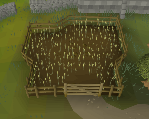 File:Cooks' Guild wheat field.png