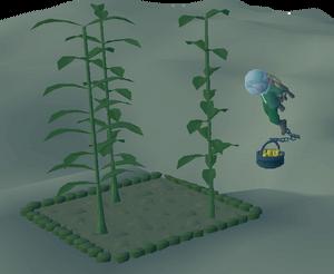Dev Blog- Fossil Island (13)