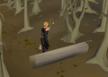 Chopping ent trunk.png