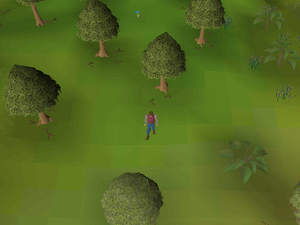 Hot cold clue - near Witchaven