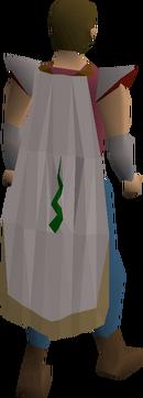Guthix cloak equipped