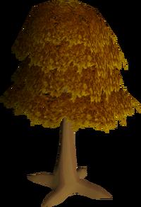 Maple tree (Construction) built