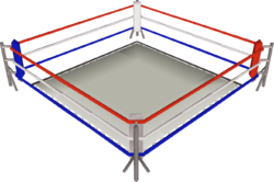 Boxing ring built