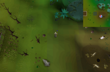 Enchanted Key Lumbridge Swamp