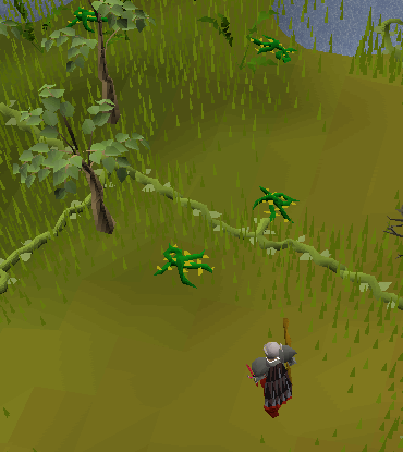 File:Snake weed location.png