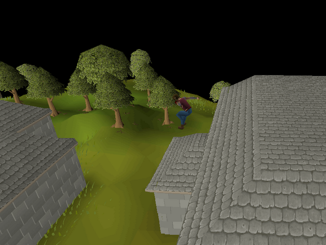 File:Seers' Village Agility Course 2.png