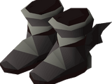 Guardian boots