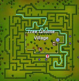 Tree Gnome Vill Map