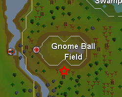 Gnomeball