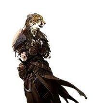 Cheetah tribe female1