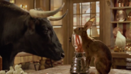 Bolero Talks To McBunny In Kitchen