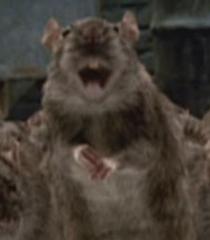 Dad-rat-garfield-the-movie-0.17
