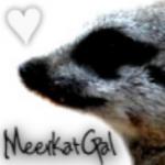 MeerkatGal