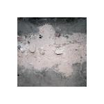 Dyingplatypus's avatar