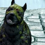 DaBarkspawn's avatar