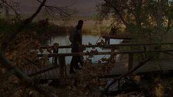 2x11 lake