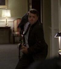 7x12 hallway guard