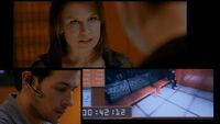 8x21 Video Loop