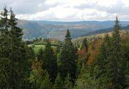 Jura-mountains4