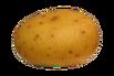 PotatoFoogle