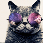 MrauuCat's avatar