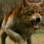 Dark Wolf 1