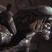 Cooltim52's avatar